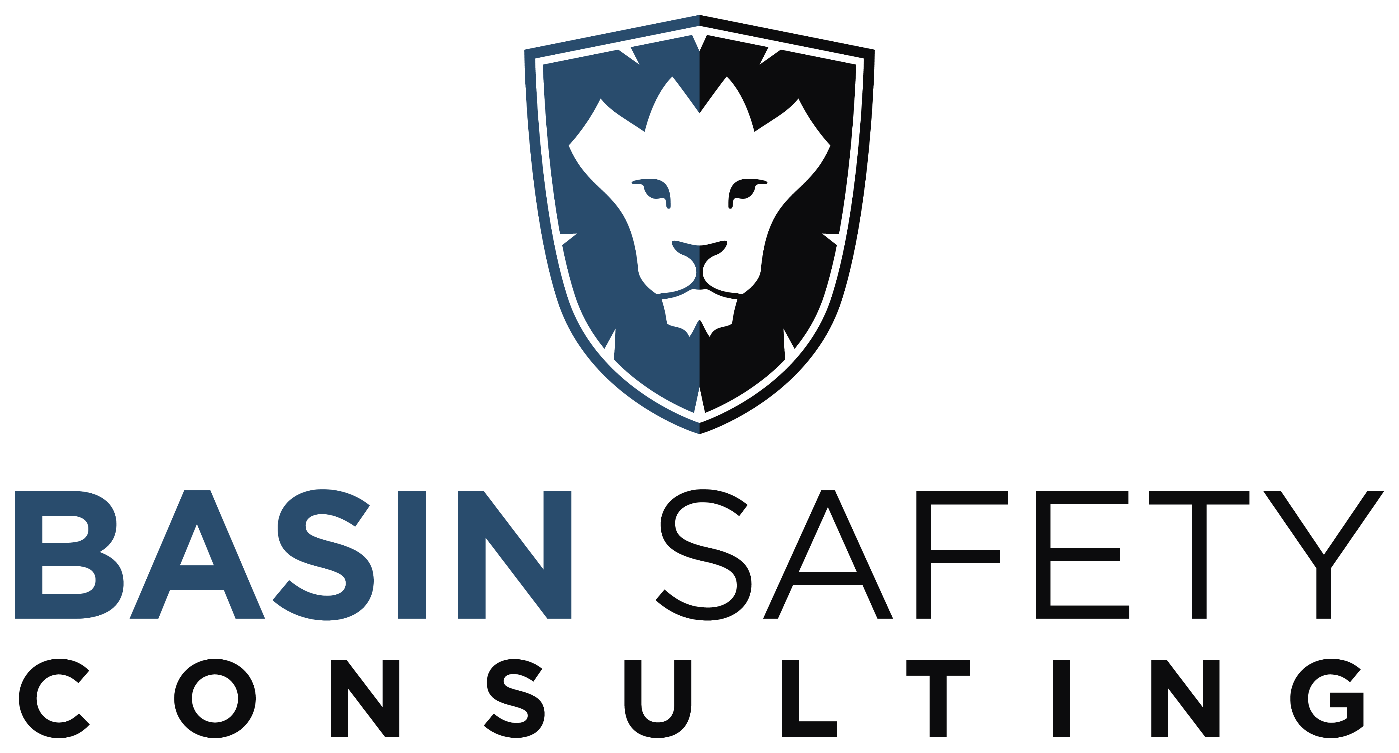 ... employment application basin safety consulting online employment